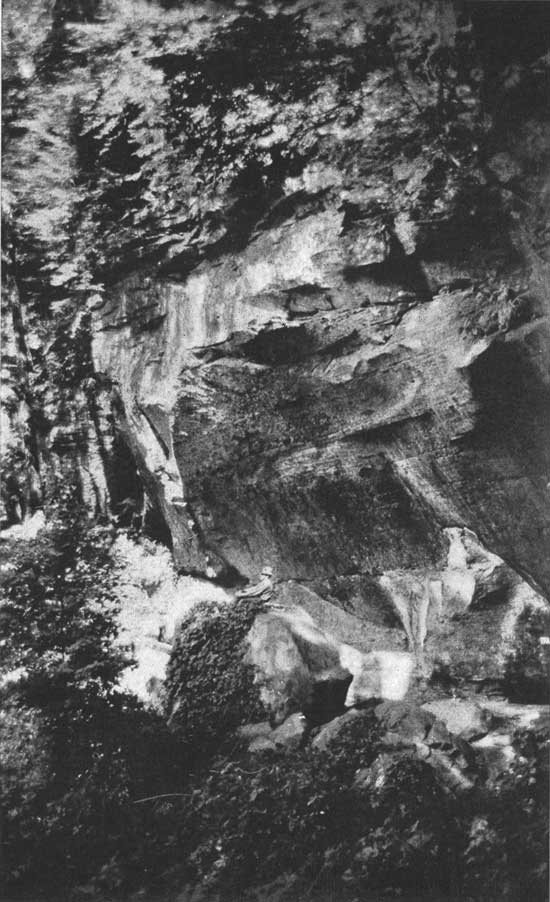 historic photo of Turkey Run State Park